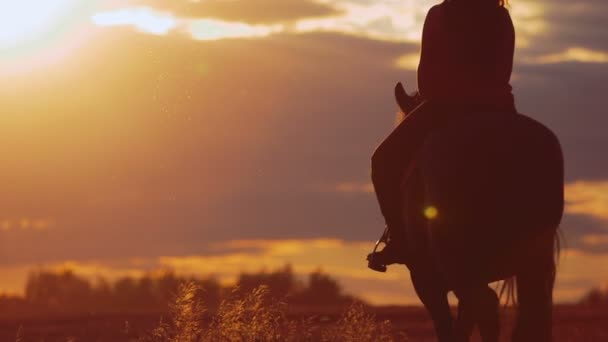 Young woman riding horse on ranch