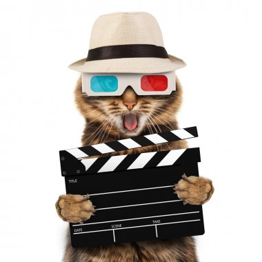 movie director cat