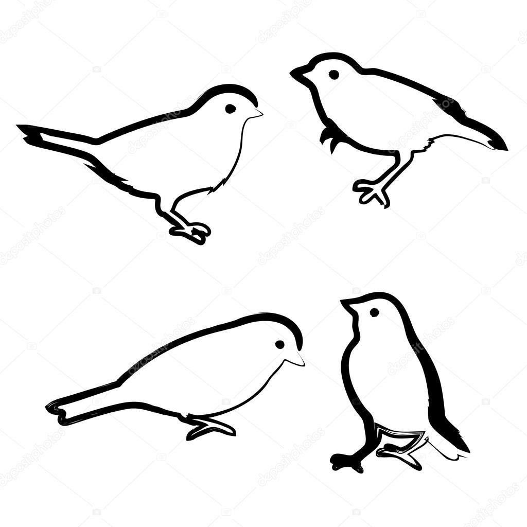 Vogeltje Kleurplaat Tekening Vogels Vector Schets Stockvector 169 Olham 80058454