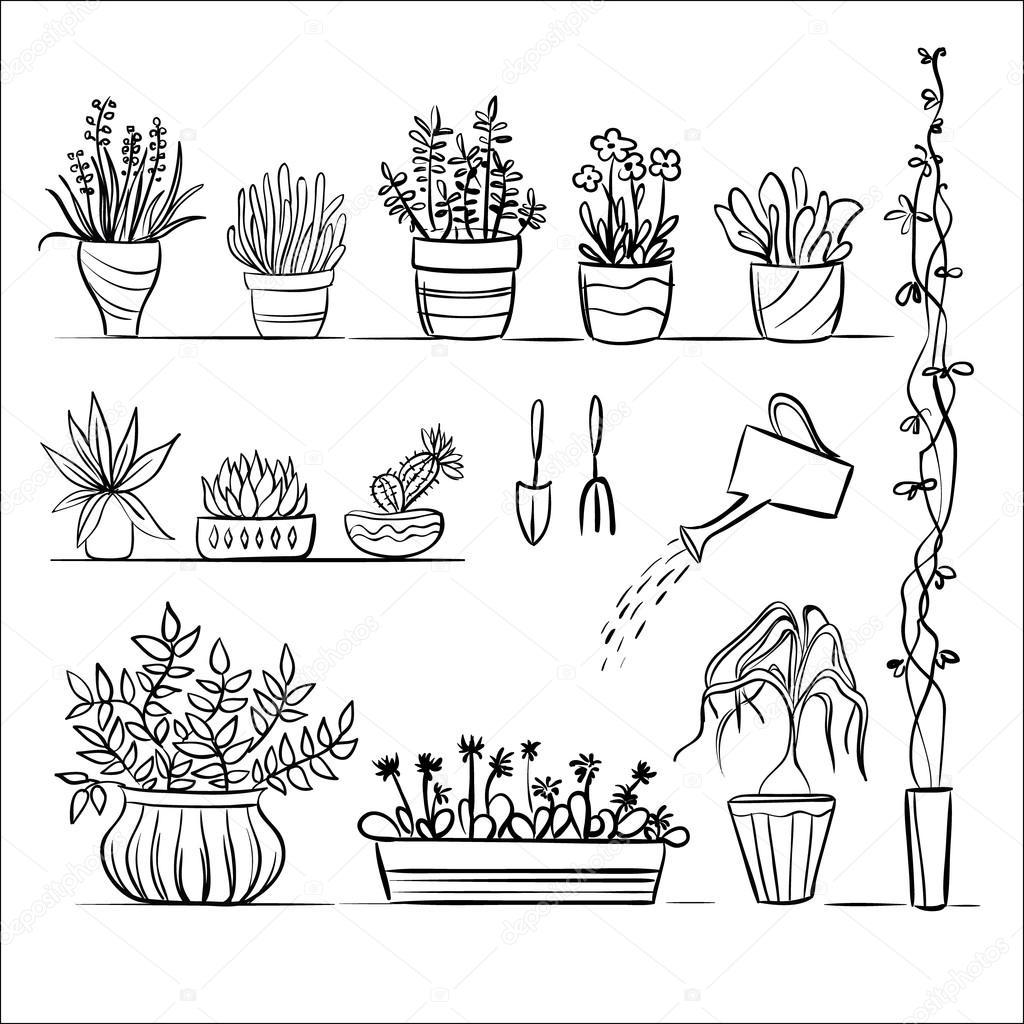 topfpflanzen und werkzeugeskizze — stockvektor © olham