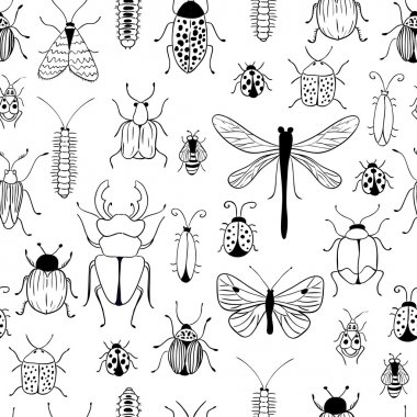 Bugs and butterflies background
