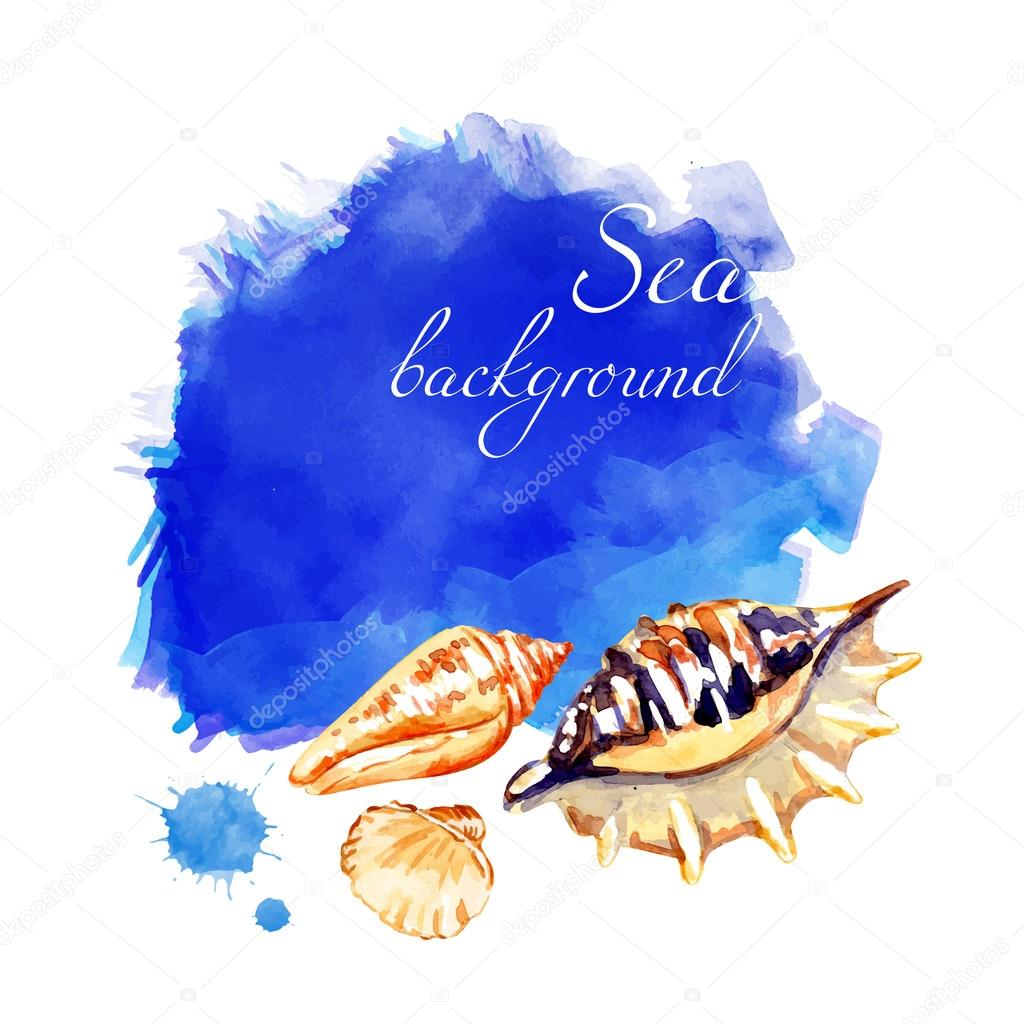 Watercolor vector seashell