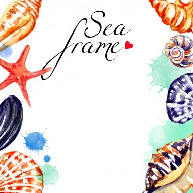Watercolor seashell background