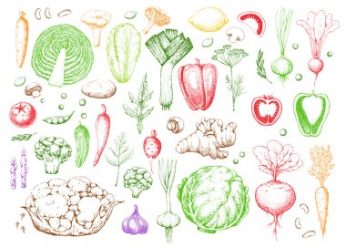 Set vegetables and herbs