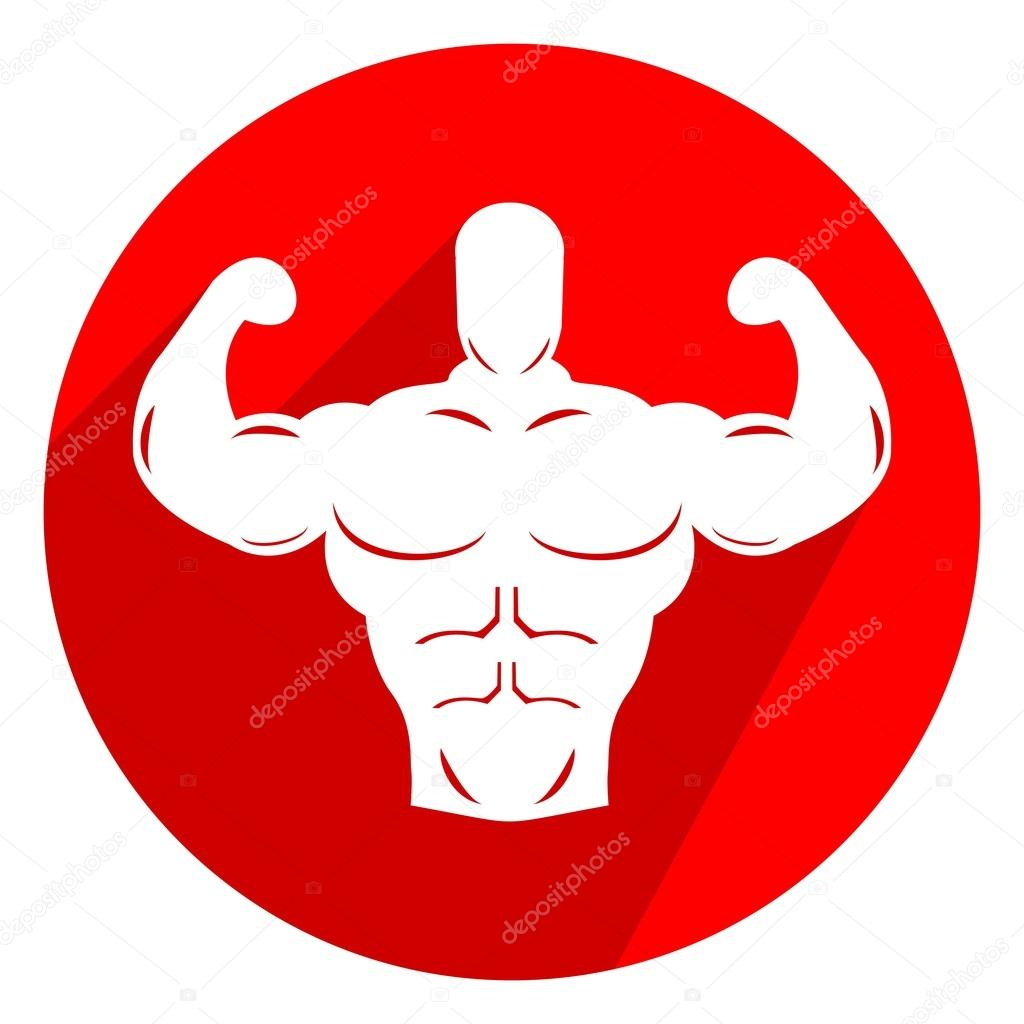 muscle vector template stock vector mehibi 83538714