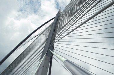 Seri Wawasan Bridge of Putrajaya, Malaysia
