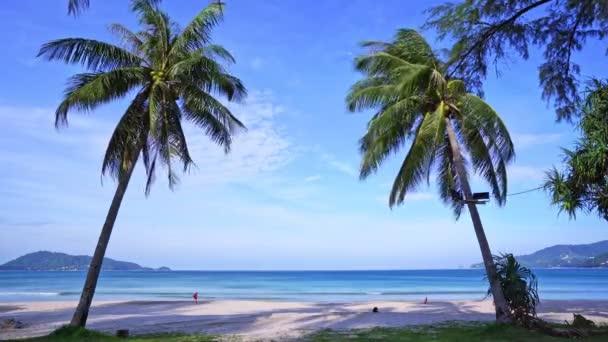 Gyönyörű strandok a világ Patong strand Phuket Thaiföld, Szigetek Palms az óceán tenyér liget a strandon fehér homok Kék tenger és kék ég Nyári táj természet kilátás