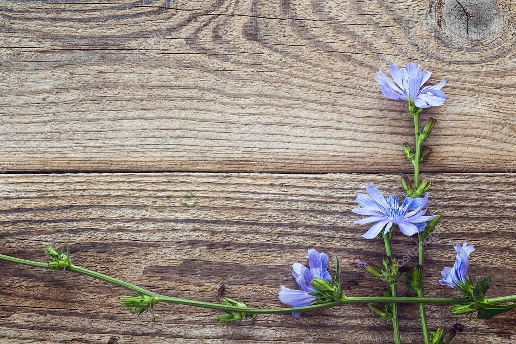 Фото фон доски и цветы