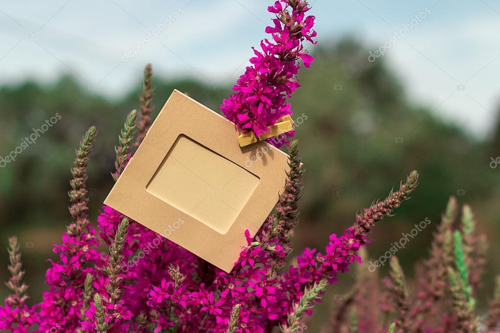 Marco vacío colgando de una flor de color púrpura al aire libre ...