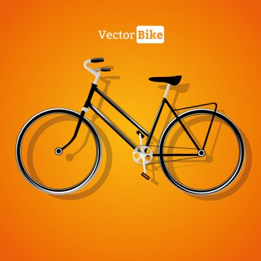 Vector detailed bicycle