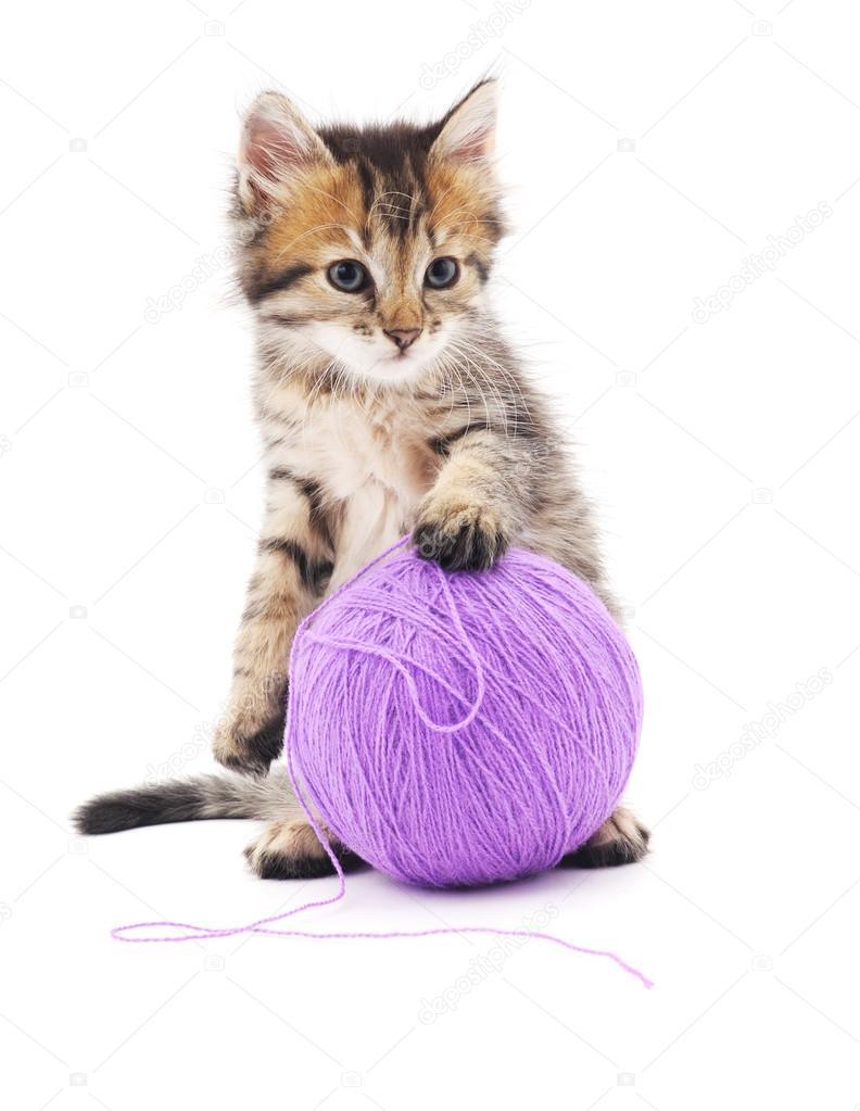 Gatito con bolas de color púrpura — Foto de stock © Voren1 #94440924