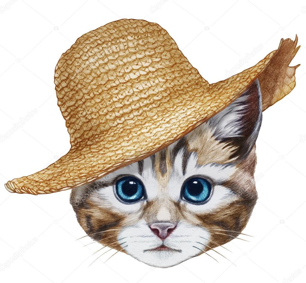 Retrato de gato con sombrero de paja — Foto de stock ...