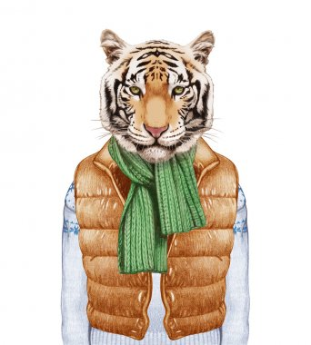 Animals as a human. Tiger in down vest, sweater and scarf.