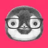 Portré pingvin szemüveg.