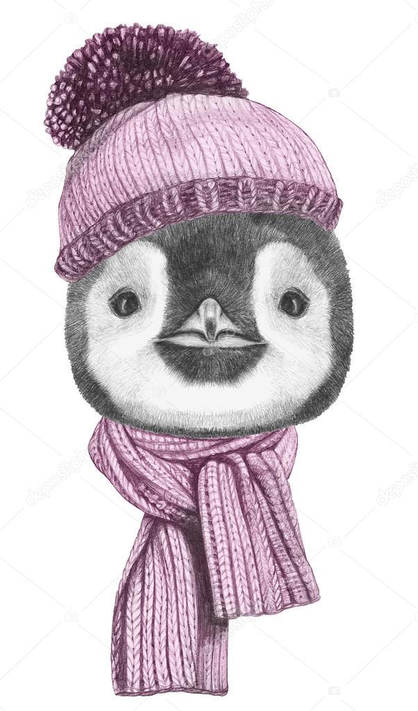 Retrato de pingüino con bufanda y sombrero — Fotos de Stock ...