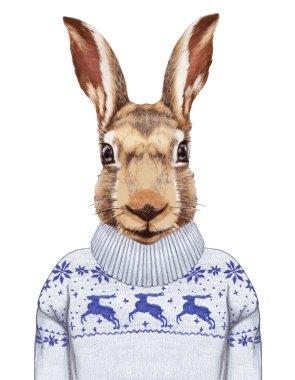 Portrait of Hare in sweater.
