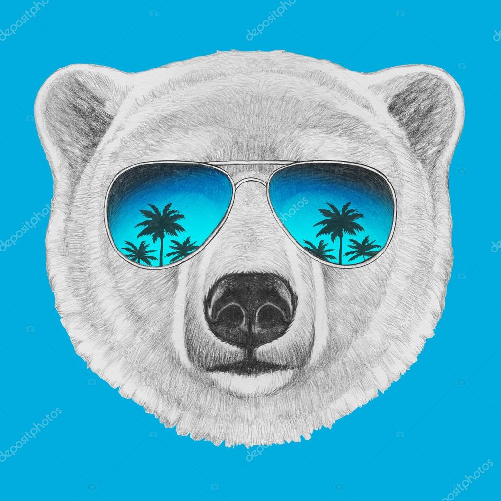 Oso polar con gafas de sol de espejo — Fotos de Stock ...