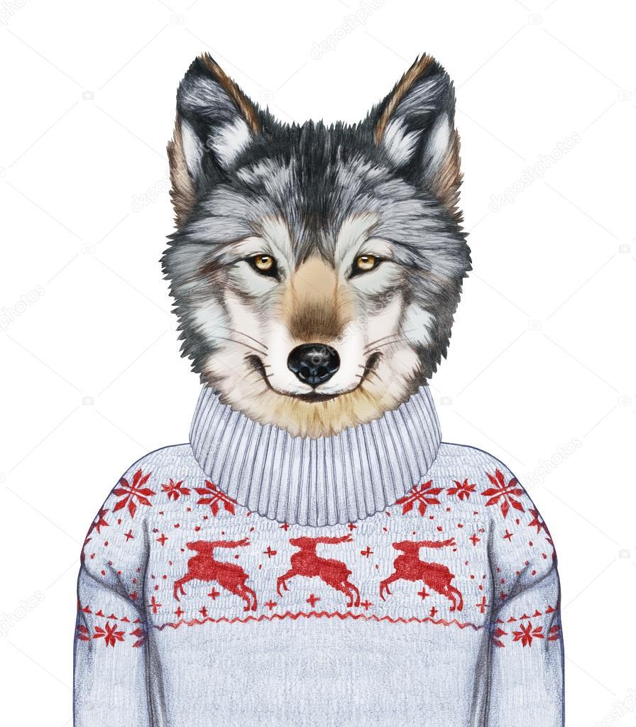 セーターに狼の肖像 — ストック...