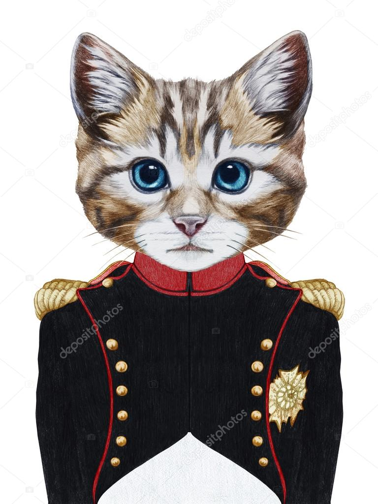 Discussion générale - Page 32 Depositphotos_111521664-stock-photo-portrait-of-cat-in-military