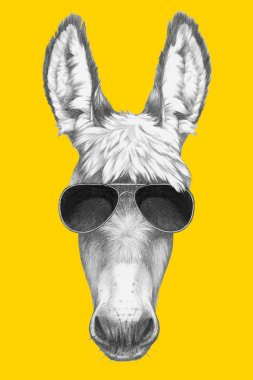 Portrait of Donkey with sunglasses.