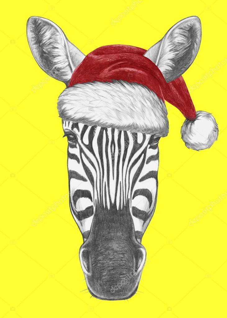 Zebra mit Santa Hut und Sonnenbrille — Stockfoto © Victoria_Novak ...