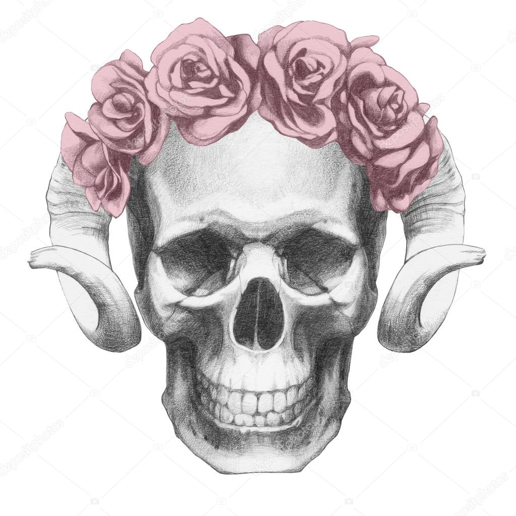 Dibujos A Lapiz De Calaveras Con Rosas Calavera Con Rosas Y La