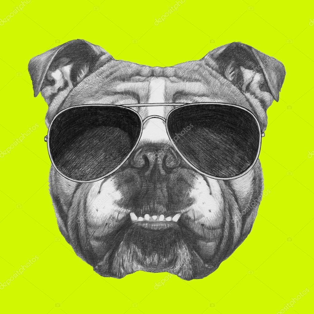 4846ed2888924 Bulldog Inglês com óculos de sol — Fotografias de Stock ...