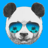 Photo Panda with mirror sunglasses