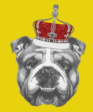 English Bulldog with crown