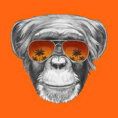 Monkey with mirror sunglasses