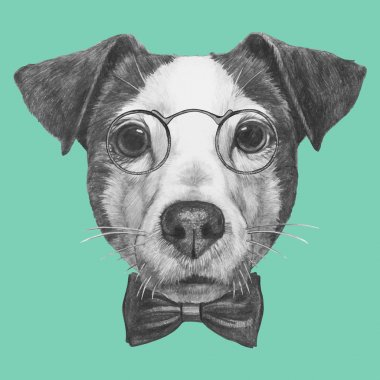 Jack Russell with glasses and bow tie