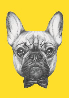 French Bulldog with glasses and bow tie