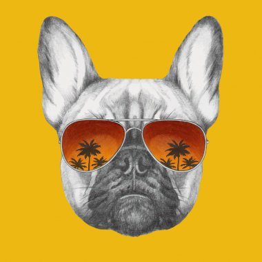 French Bulldog with mirror sunglasses