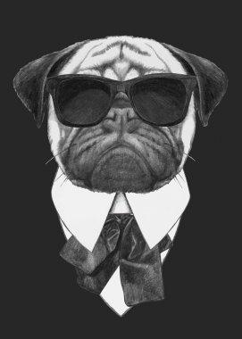 Pug Dog with sunglasses