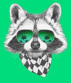 Raccoon with mirror sunglasses and scarf