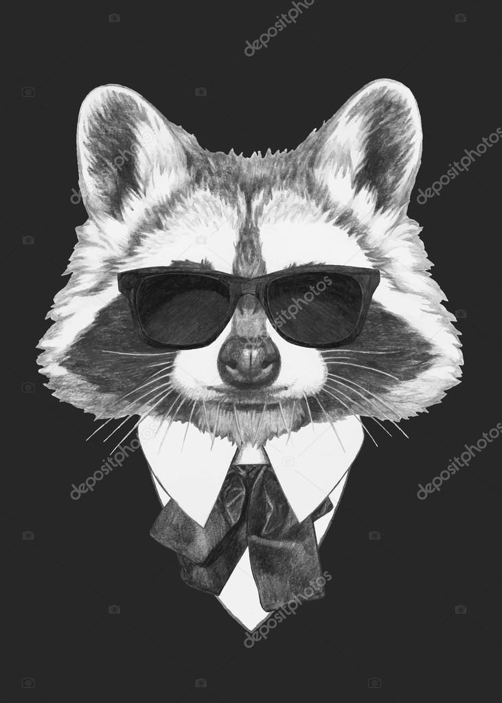 fashion Illustration of Raccoon