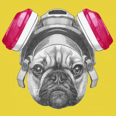 Portrait of French Bulldog with gas mask