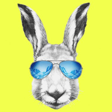 Portrait of Hare with mirror sunglasses.