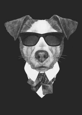 Portrait of Jack Russell dog in suit