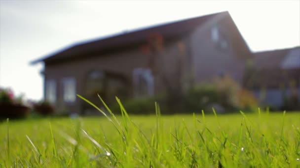 a privát barna fából készült ház. Nyilallt fű