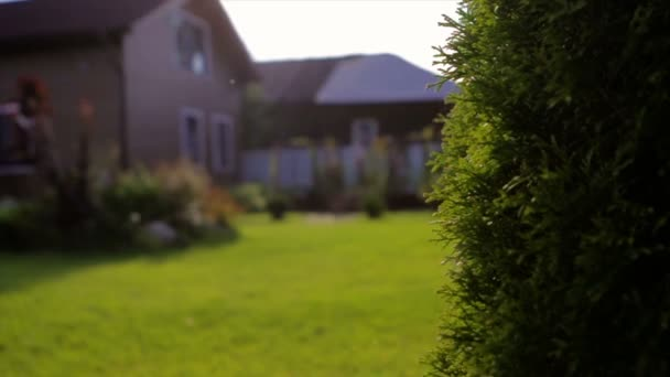 egy barna ház, egy kert vidék