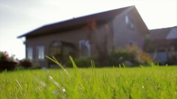 Soukromé hnědý dřevěný dům. Zastřelil trávou