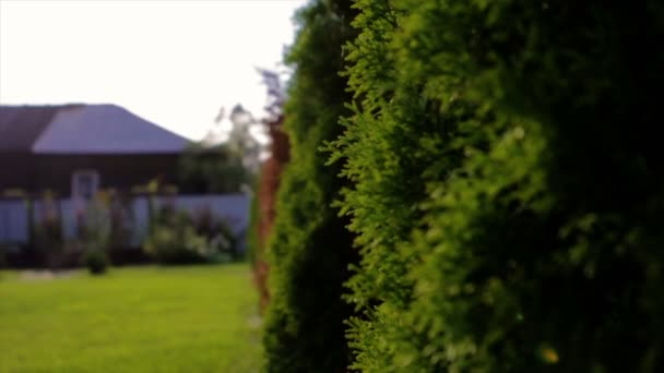 Magányos barna vidéki ház egy kert