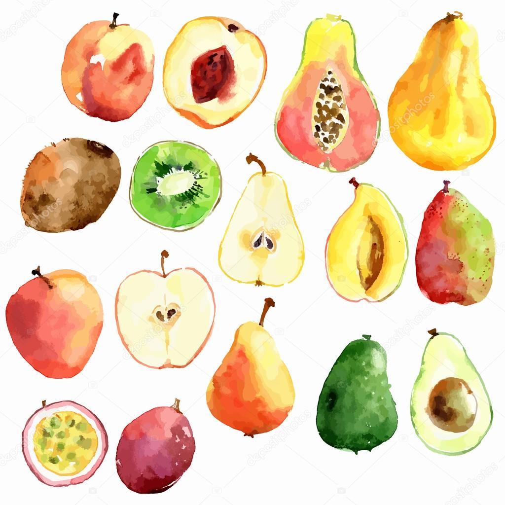 Bright  watercolor fruits: