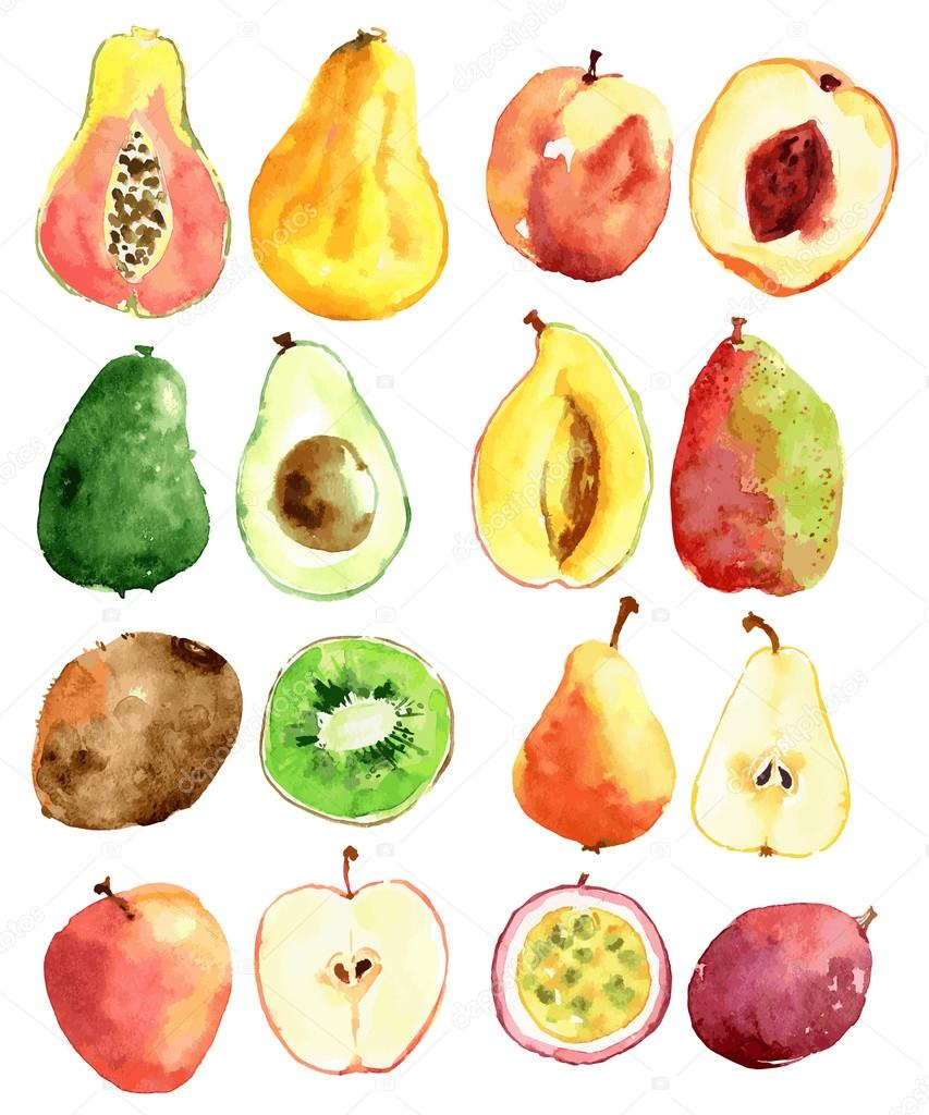 Bright vector watercolor fruits: apple, pear, peach, avocado, passion fruit, papaya, mango, kiwi clipart vector