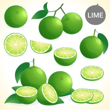 Set of green lime with leaf in various styles vector format