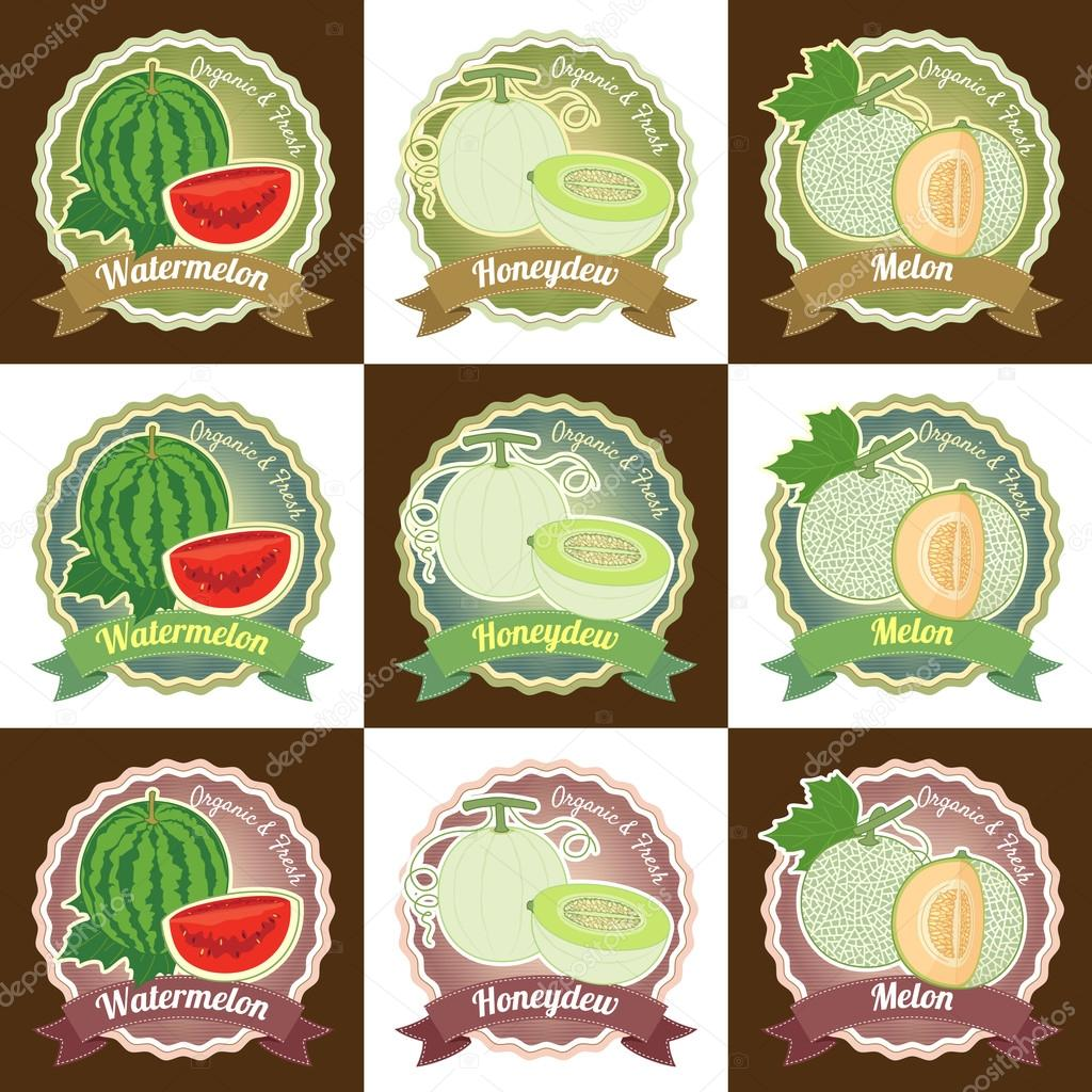 Set of various fresh melon fruit premium quality tag label badge