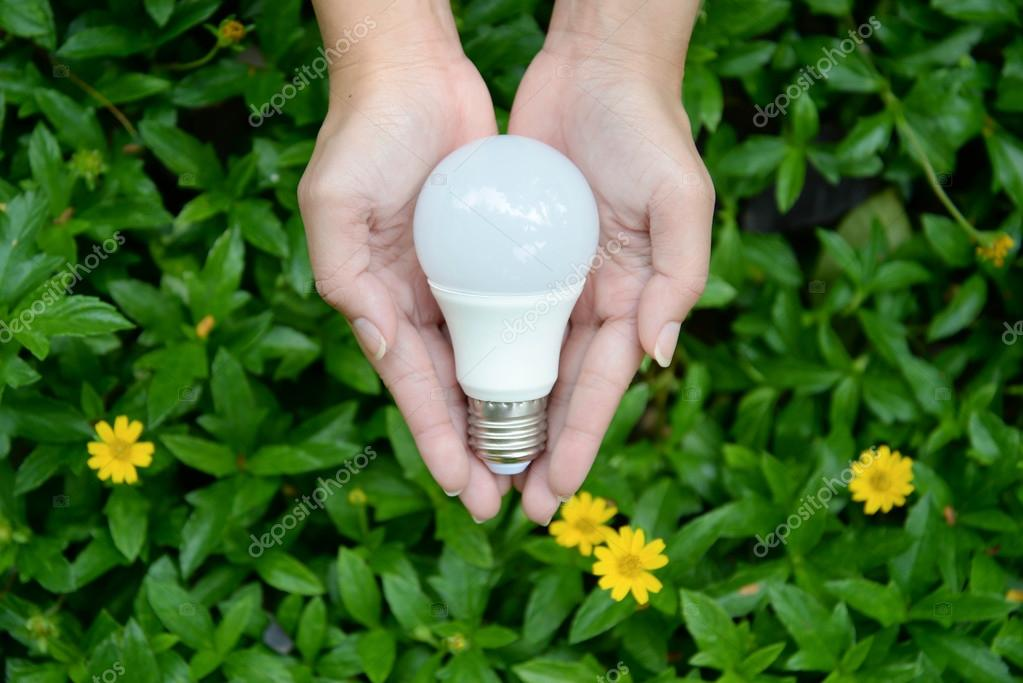 eco friendly lighting. LED Bulb - Technology Of Eco-friendly Lighting \u2014 Stock Photo Eco Friendly A