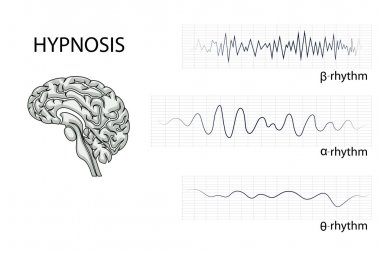 the brain electrical waves