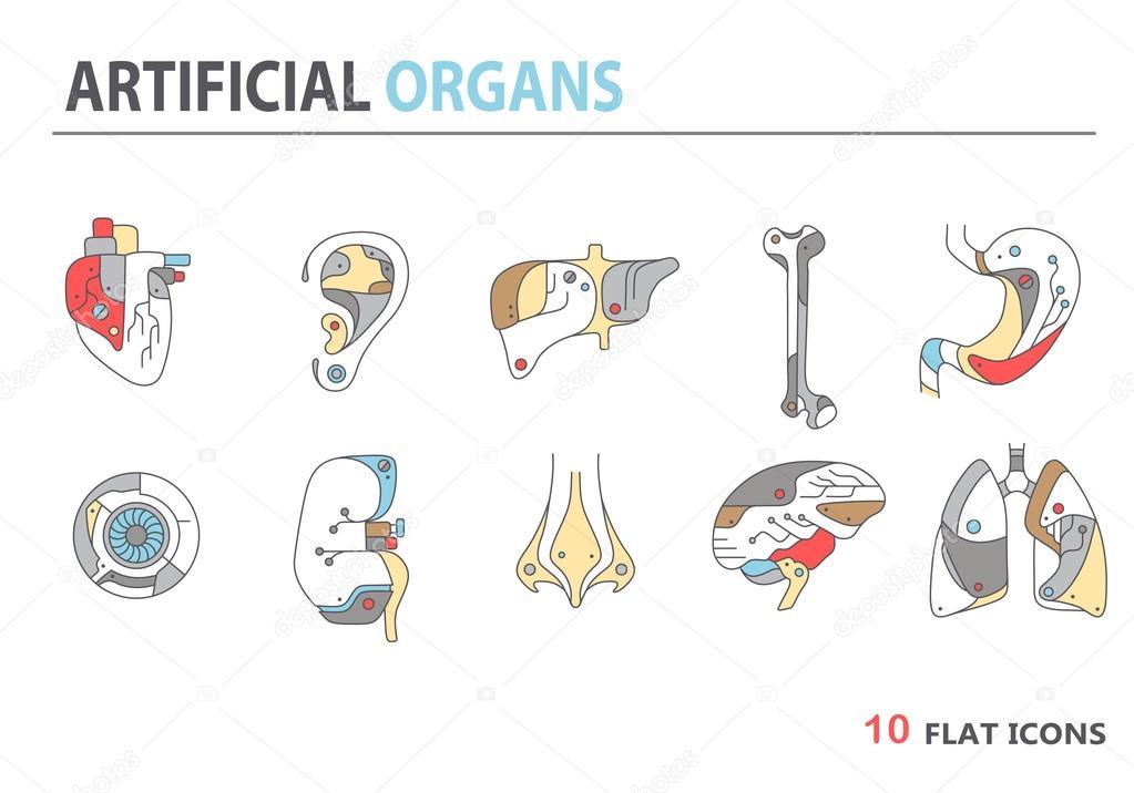 10 Myths About Organ Donation